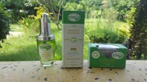 Organic Moringa Cambodia