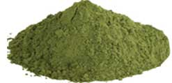Organic Moringa-powder
