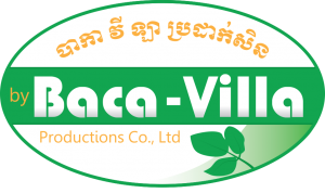 Baca-Villa Privacy Policy