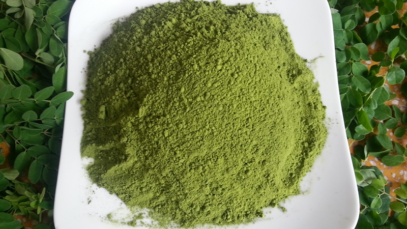 The Power of Moringa Powder Protein.