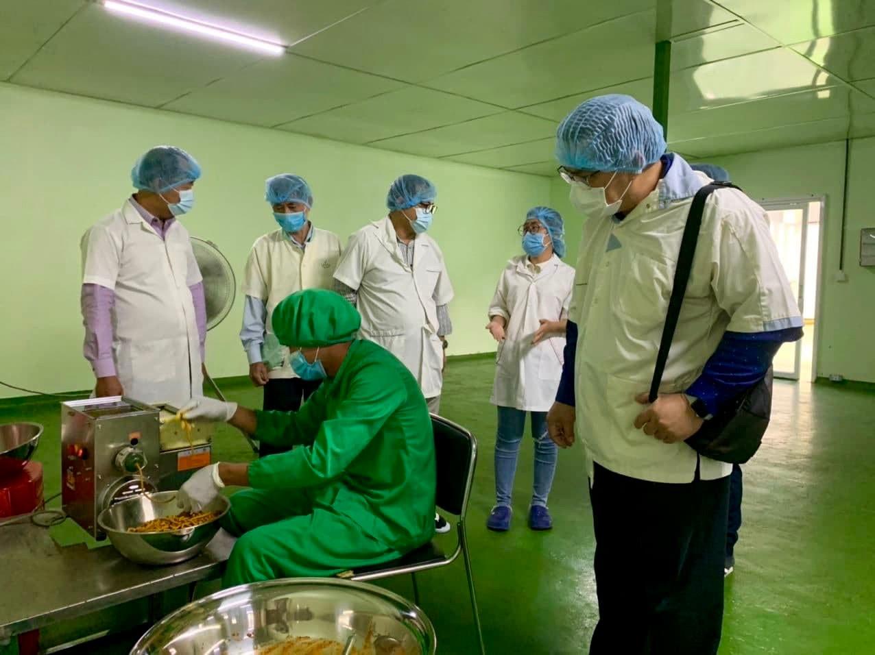 Factory Moringa